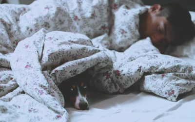 How To Have Good Quality Sleep: For The Busy Executive